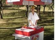 Carrito de hot dog LX