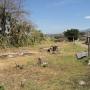 Desamparados, Alajuela Área 140 LOTE