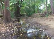 Isla Verde, 27 de abril, Santa Cruz,Gte.   FINCA