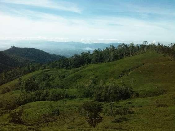 Finca rodeada de naturaleza con lindas vistas, bosque,potrero,3 nacientes de agua veranera