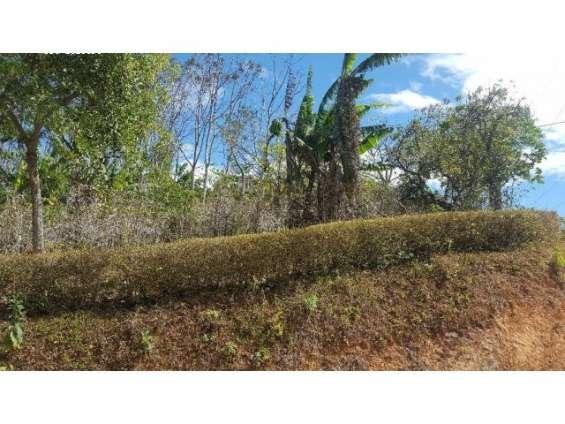 Fotos de Se vende hermosa propiedad en frailes de desamparados. 5
